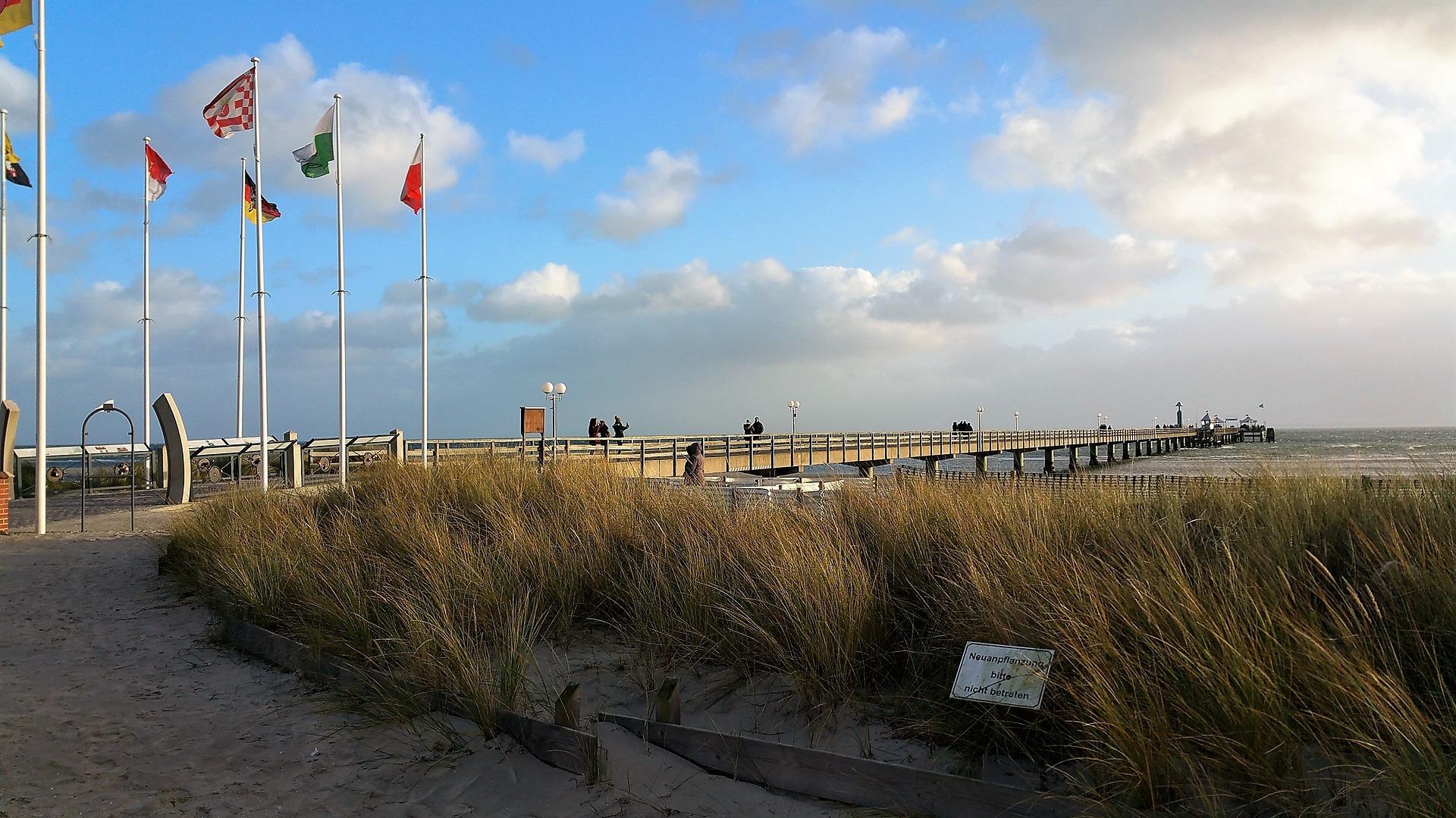 Lexikon: Pflanzenarten - Pflanzenarten in der Ostsee
